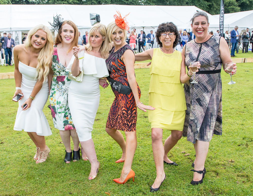 Guests-stomping-the-divets,-Polo-In-The-City-2015,-Pontcanna-Feilds