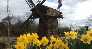 Directory: Dutch Garden Centre